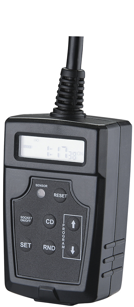 Short Lead Time for Digital Programmable Timer -